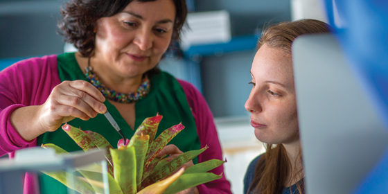 UNDERSTANDING CHANGING ECOSYSTEMS <br>Katrina DeWitt, at right, works closely with Assistant Professor Angélica González on the goal of understanding how ecosystems respond to global environmental changes.